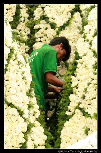 Busy at work in Lalbagh Flower Show - August 2011